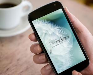 android app development milan